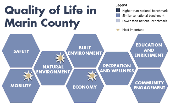 Infographic that indicates which community facets were deemed the most important focus areas for the community.  The top three focus areas are Mobility, Natural Environment and Economy.