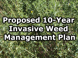 Weed Management Plan