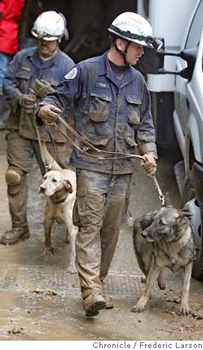 Canine rescue unit working on a mudslide rescue.