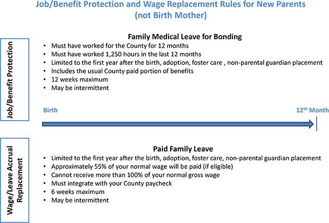 Non Birth Mother Family Medical Leave and Parent Medical Leave Diagram