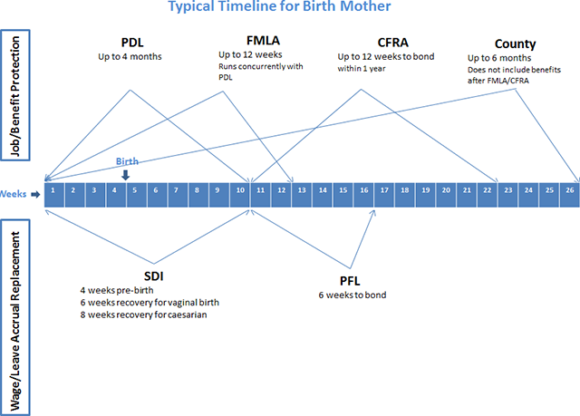 Typical Timeline for Birth Mothers Chart