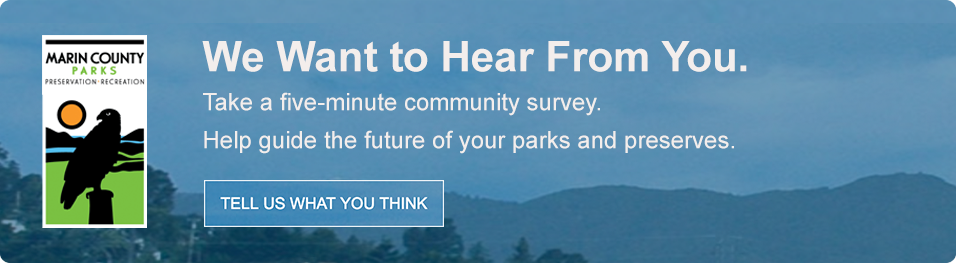 Image representing the 2019 Marin County Parks Survey