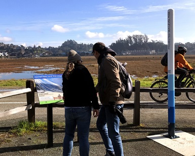 A woman and man read information about sea level rise along a path adjacent to Bothin Marin. A pole showing projected sea level rise is next to them.