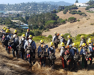 A crew of 16 fire fighters in fire hats and gear overlook a Marin hillside just prior to conducting vegetation management efforts of cutting, chipping, removing, and burning hazardous vegetation using chainsaws, chippers, masticators and other specialized equipment.
