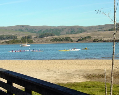 A view of Chicken Ranch Beach, with sand in the foreground and kayakers in the water in the distance.