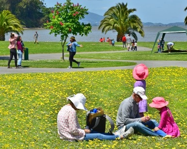 A family enjoys a picnic on the grass at McNears Beach Park near San Rafael as others walk behind them.