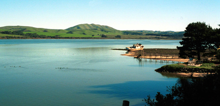 Tomales Bay from Inverness