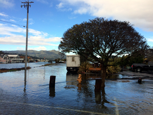 King Tides Yellow Ferry Harbor, Sausalito