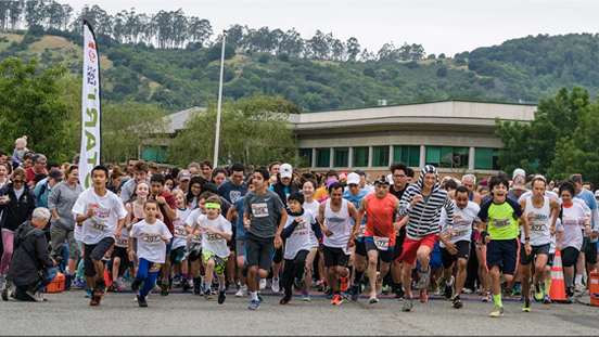 Bay Area Human Race contestants taking off from the starting line at the Marin County Fairgrounds.