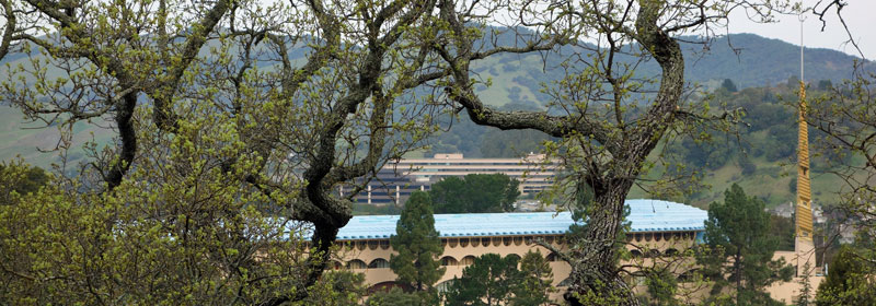 Image of Marin County Civic Center from Open Space