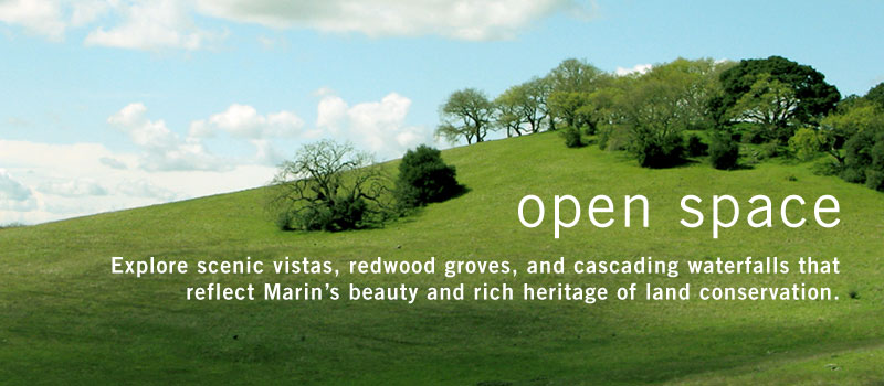 Open Space Banner