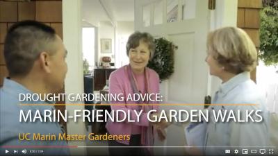 Marin Master Gardeners: Drought Gardening Advice