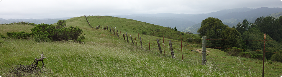 Loma Alta Open Space Preserve